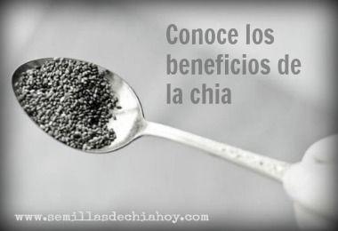 propiedades de las chia semillas